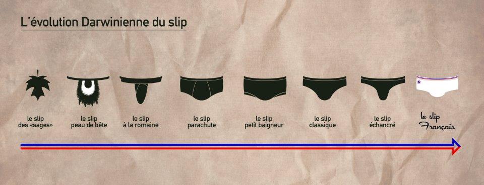 Le-slip-français-évolution-Le-Bonbon