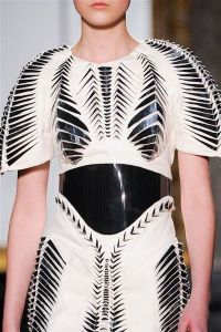 photo-8-details-du-defile-iris-van-herpen-haute-couture-printemps-ete-2013_4232088